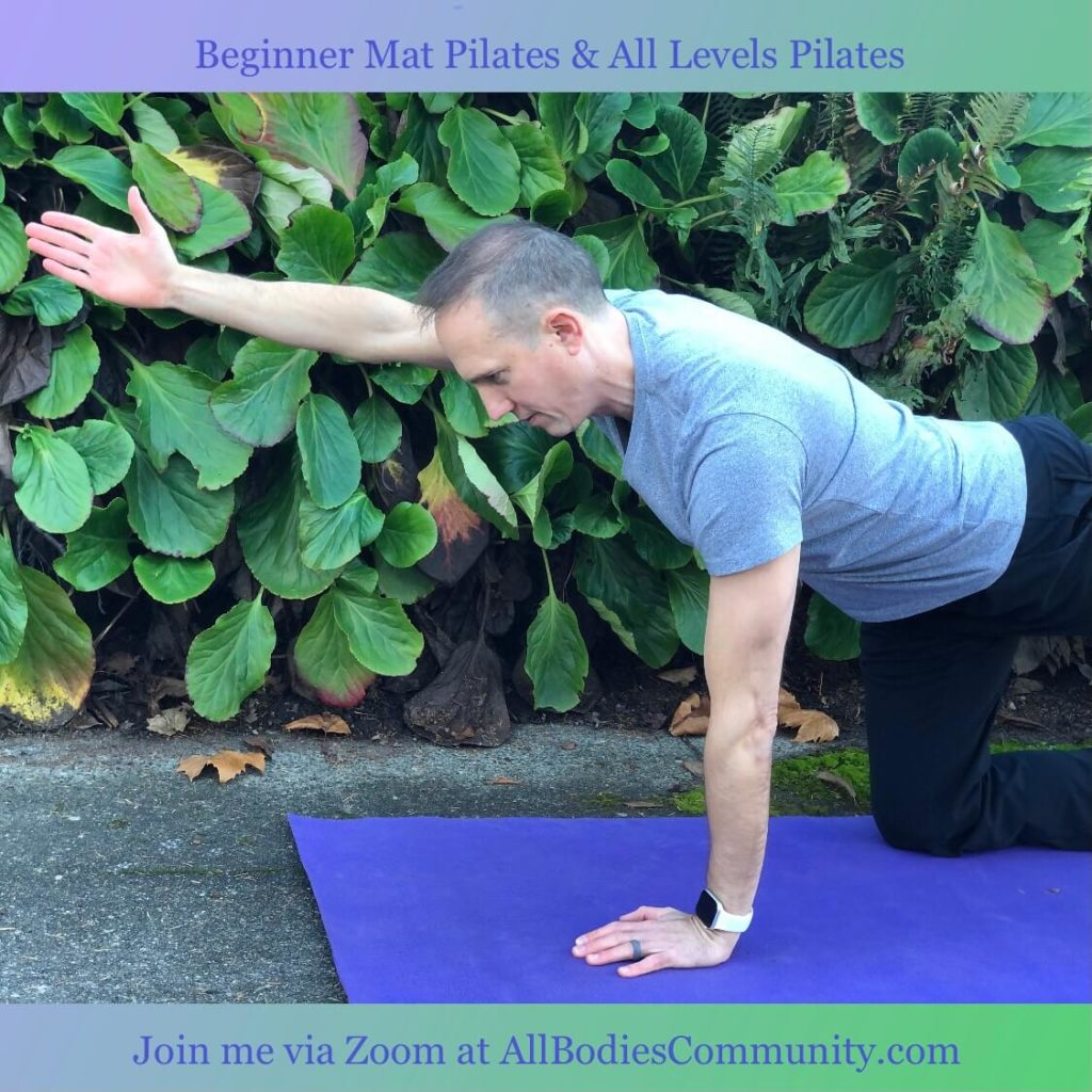Beginners Pilates and All Levels Pilates via Zoom